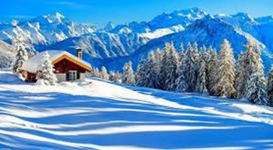 Chilly_Winter