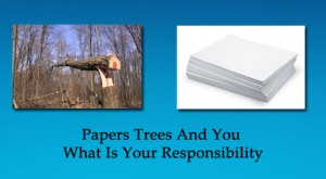 papers_trees_and_you_what_is_your_responsibility