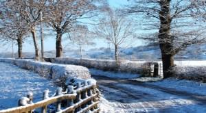 winter_sence